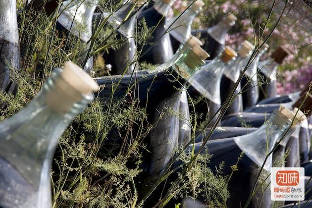Banyuls,玻璃坛中陈年的自然甜酒,图片来源:caves-de-courcelles