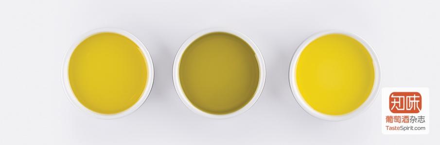 Olive-Oil_Header_Magento_905x300