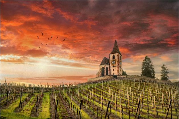阿尔萨斯小村Hunawihr的葡萄园,图片来源:Jean-Michel Priaux