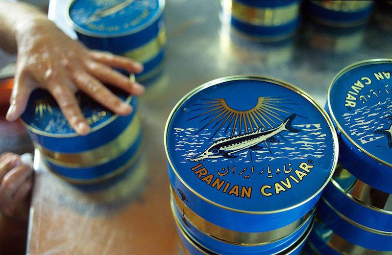 伊朗的鱼子酱生产作坊,图片来源: Kaveh Kazemi/Getty Images