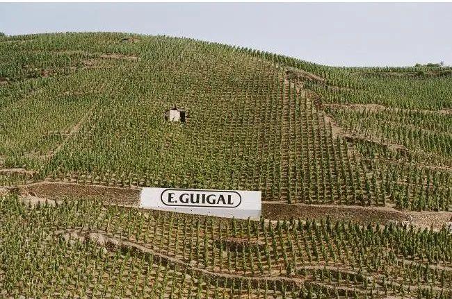 斩获大量帕克满分的隆河大名庄E. Guigal,旗舰酒款都在这了!
