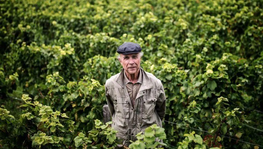 独家|罗曼尼康帝庄主:葡萄酒变成奢侈品是很危险的事情!