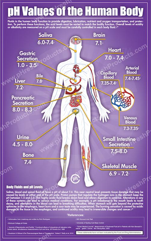 人体不同部位的PH值差异