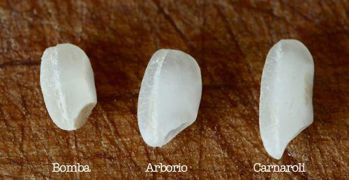 邦巴米(Bomba),意大利米(Arborio)和Carnaroli