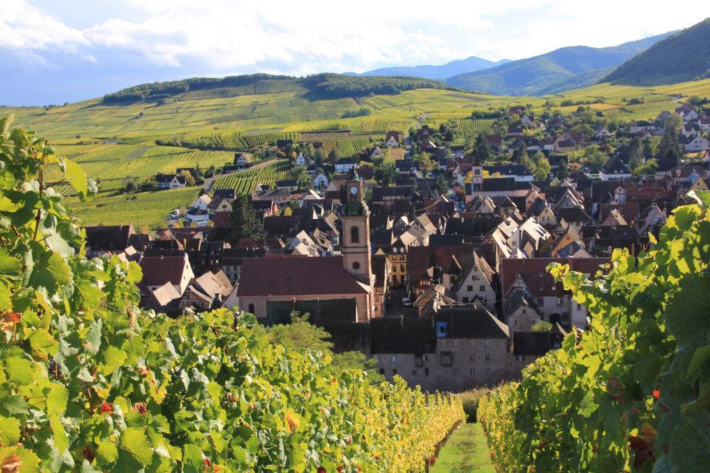 雨果扎根于上莱茵省(Haut-Rhin)里克威尔(Riquewihr)小镇