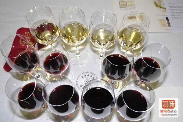 接受品鉴的拉菲罗斯柴尔德集团旗下2008和2009两个年份的12款酒