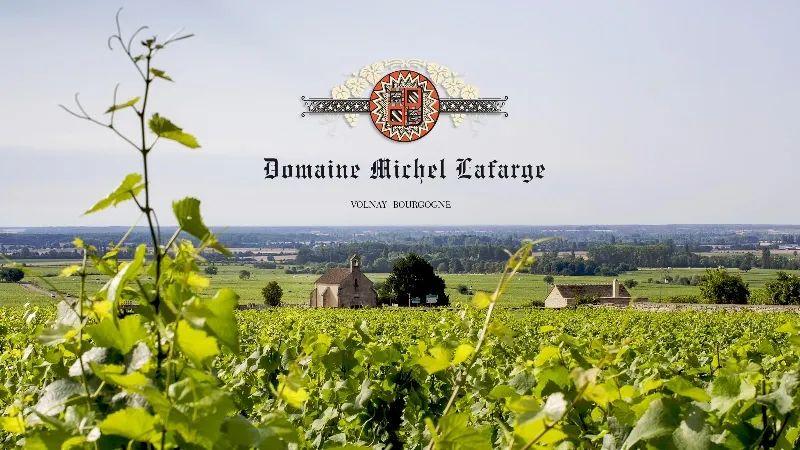 罕见勃艮第大名家Lafarge的Aligoté,性价比超高又好喝