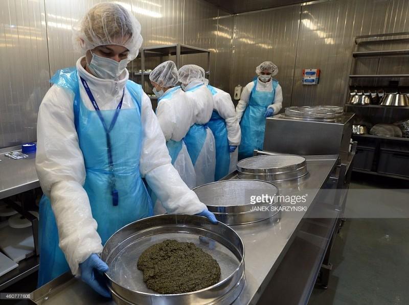 鱼子酱的筛选过程,图片来源:Getty Images