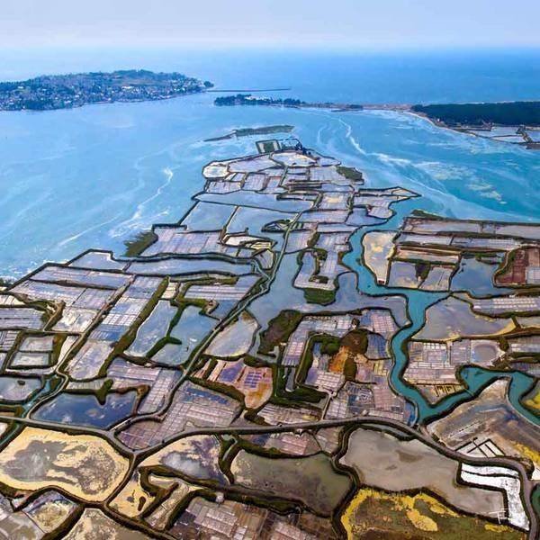 法国盖朗德的盐场,来源:Guerande Tourism