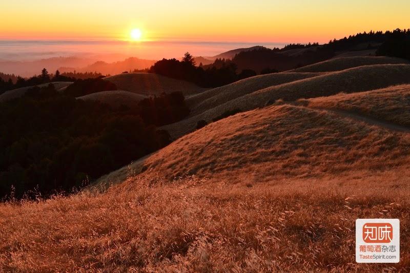 硅谷不仅是IT产业的重镇,同样也拥有迷人的自然景观,图片来源:bestsantacruztours.com