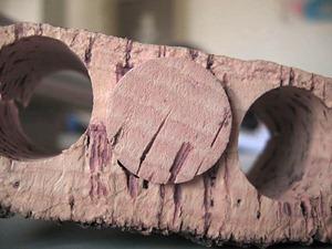 在栓皮栎树的树皮上打洞得到天然软木塞,来源:维基百科