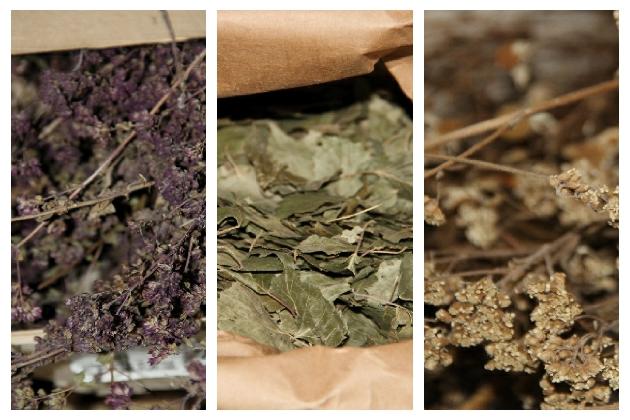 生物动力法通常需要在葡萄园中喷洒各式草药,图片拍自塔兰香槟,来源:谢晓燕/知味葡萄酒杂志