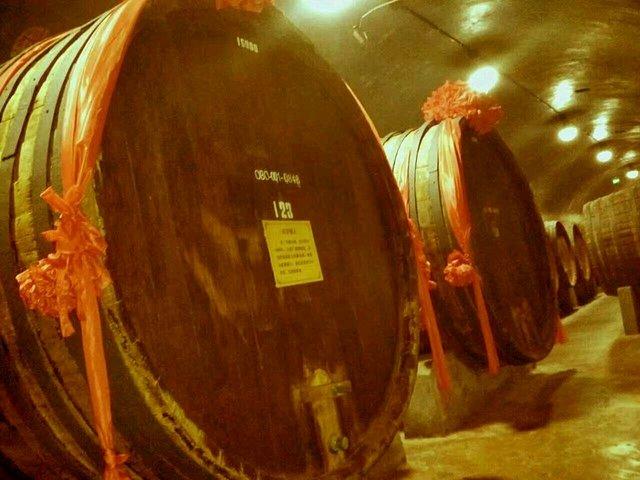 张裕酒厂里保留的一些百年老桶,大多都来自昔日张弼士南洋橡木种植园