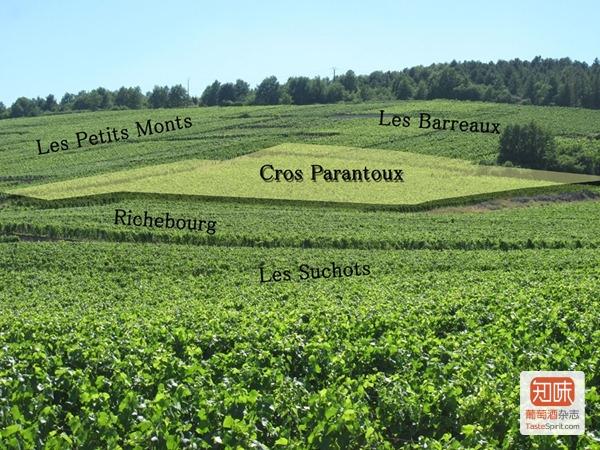 克罗-帕宏图一级田(Cros Parantoux)在沃恩-罗曼尼(Vosne Romanée)的位置