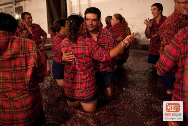 现在也可以这么体验酒庄自酿踩皮,来源:葡萄牙Quinta do Vesuvio波特酒庄