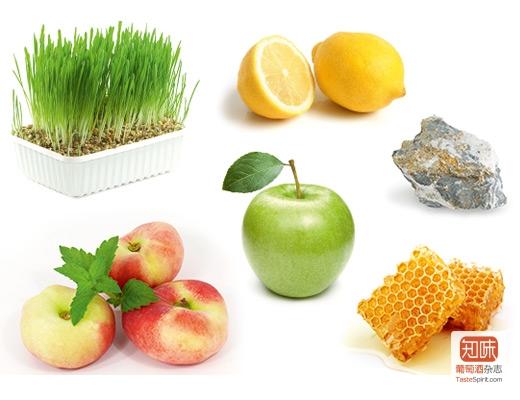Riesling-Weinbergspfirsich-Apfel-Zitrusfrucht-Honig-Mineralik-frisches-Gras