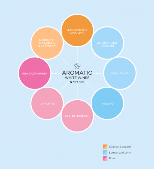 Aromatic-White-Wines-wine-folly1
