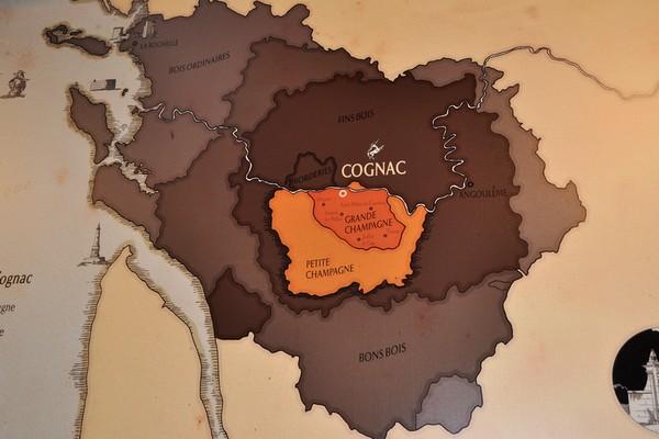 人头马干邑的葡萄百分之百来自于干邑地区中心最顶级的大小香槟产区(Grand Champagne和Petite Champagne),来源:高翔