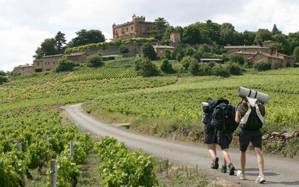 博若莱的Château Montmelas城堡,来源:Daniel Gillet/Inter Beaujolais