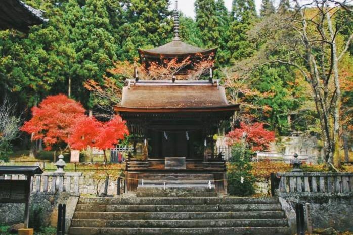电影中宫水神社的原型,新海三社神社