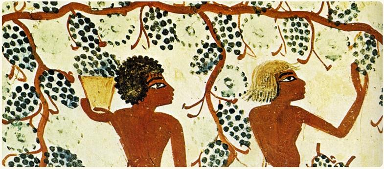 古埃及壁画,绘画时间大致在公元前1300年