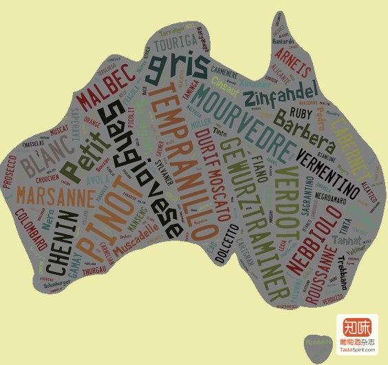 随着对当地风土了进一步了解,澳洲各地的酒庄主开始寻找更适合自己的葡萄品种,图片来源:vinodiversity