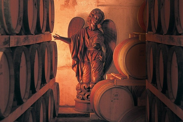 蒙特斯酒庄(Montes)酒窖里的天使雕像,来源:Montes