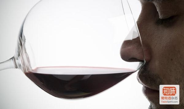 闻香识酒:品鉴酒香的基本步骤