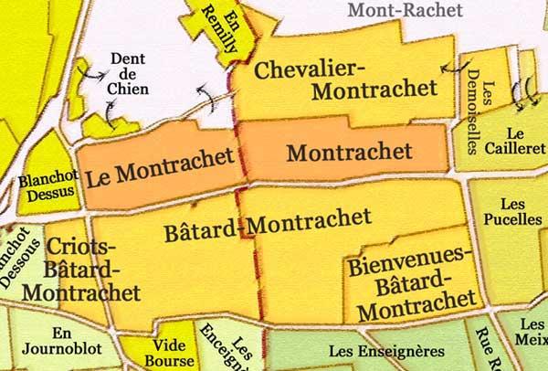 横跨两个村子的蒙哈榭(Montrachet),来源:montrachet.com