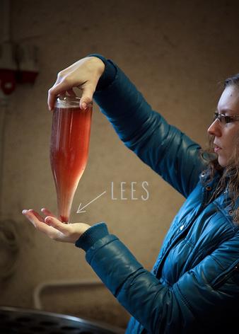 二次发酵在香槟中产生的酒泥,图片来源:winefolly.com