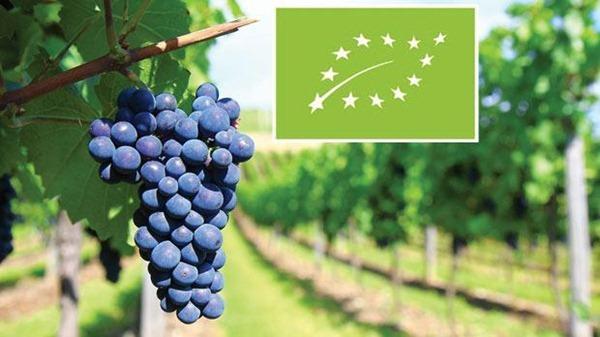 """欧盟""""有机葡萄酒""""的新认证标识,图片来源:AFP"""
