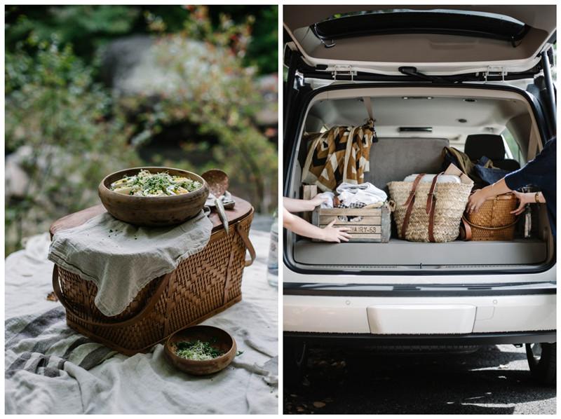 如何准备一次完美的野餐?