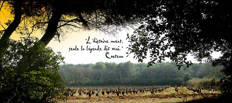 "Château Rayas的葡萄园,图中文字为""历史可以撒谎,传奇只说真相"",图片来源:Château Rayas"