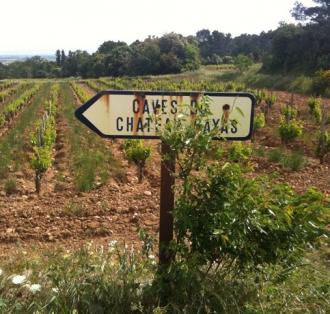 """牌子上写着""""通往Rayas酒庄的路"""""""