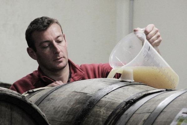 堡林爵(Bollinger)的工作人员在为老橡木桶中第一轮发酵的香槟补充酒液,来源:谢晓燕