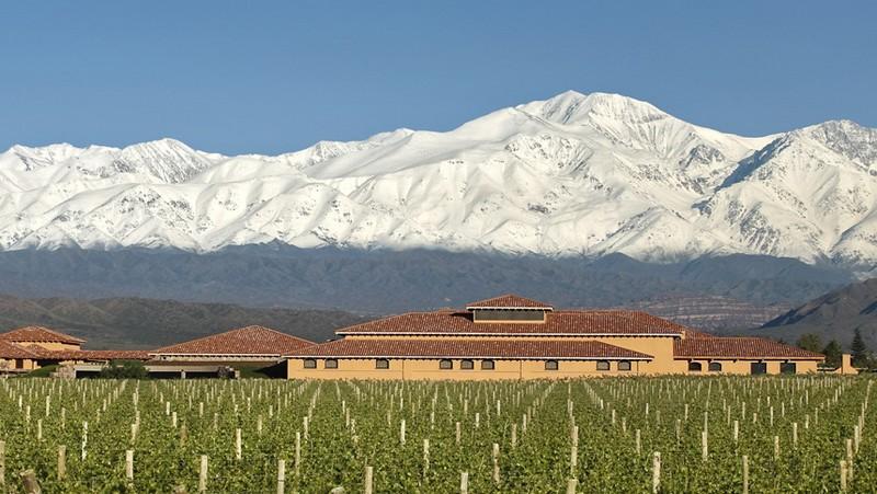 安第斯山下的葡萄园,来源:Finca Decero