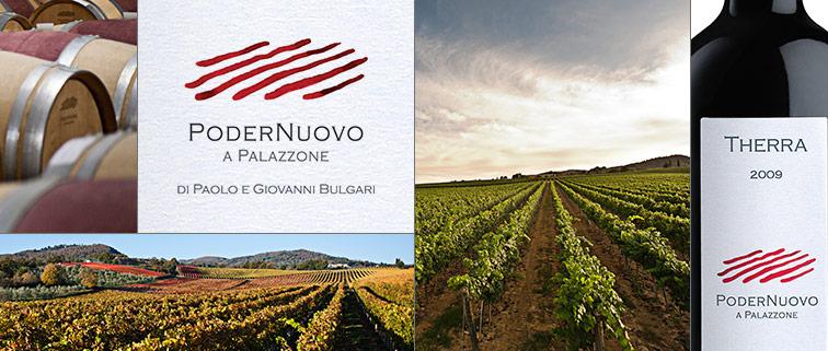 Poder-Nuovo a Palazzone,图片来源:mmdusa