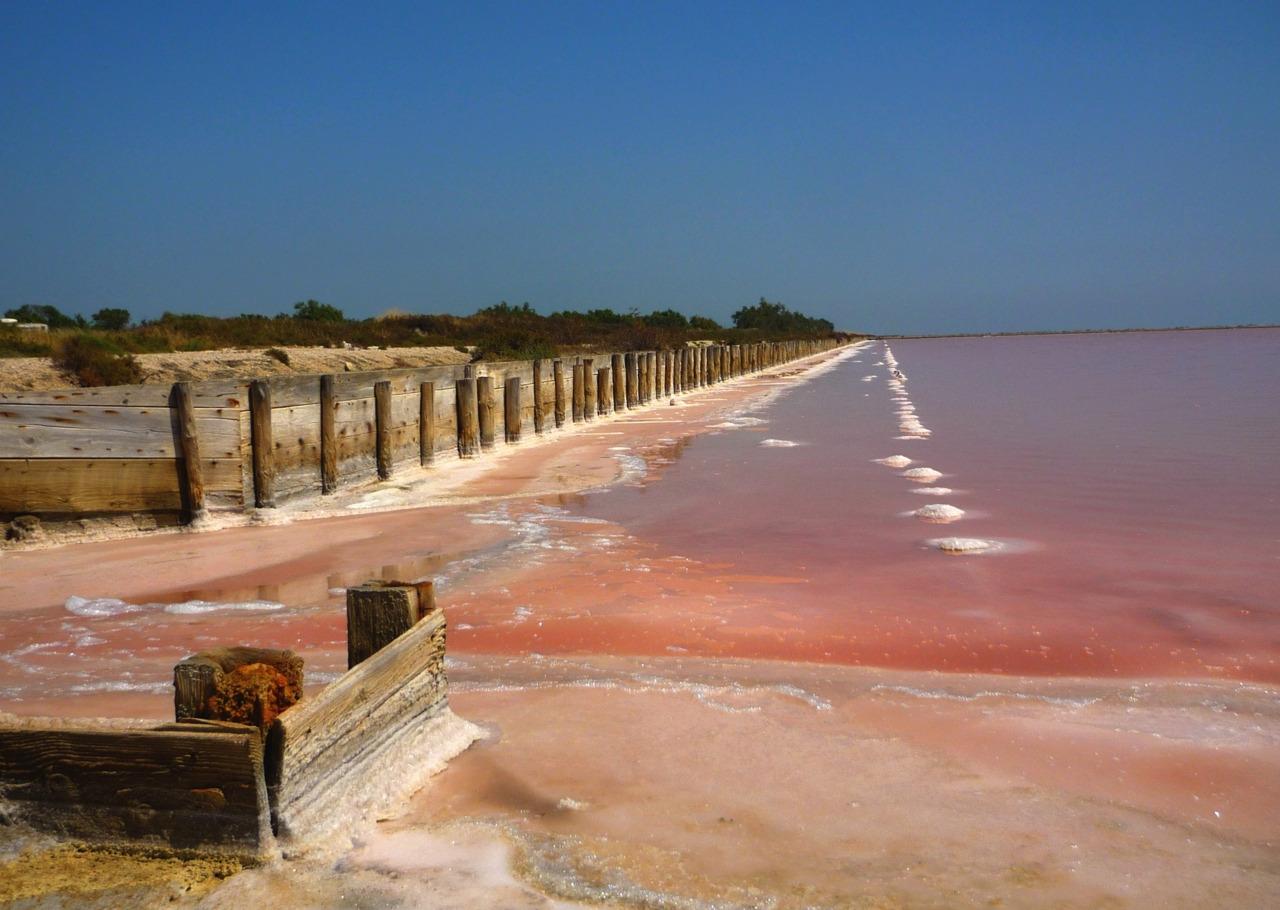 卡马格的盐田,粉色岩田中的白色凸起,是盐农将盐花聚拢在一起形成的