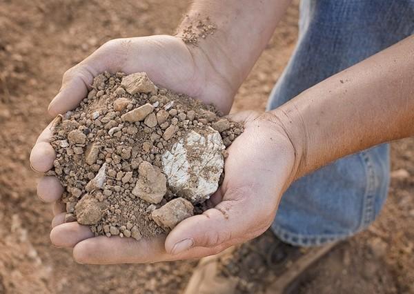 丽山的典型土质:粘土与弗朗西斯科绿石的混合,底土为石灰岩碎片,来源:Ridge Vineyards