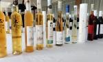 中国葡萄酒的未来在哪里?深入探访几家国产酒庄,我们找到了答案