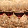 2014葡萄酒发展峰会震撼回顾