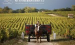 生物动力法葡萄酒权威大师班:深度解码生物动力法葡萄酒的奥秘