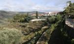 """火鸟庄园 Quinta do Noval 决定出产2011""""国家园""""年份波特"""
