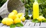 瓶装阳光: 意大利柠檬甜酒