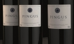 探访西班牙名庄:平古斯 Dominio de Pingus