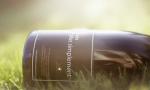 发掘勃艮第的无名珍宝:酒之天然 Bernard van Berg