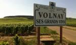 酒评家布尔奇:沃尔内Volnay的珍宝