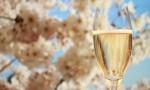 四月:去香槟的好时候