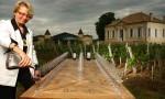 紫罗兰酒庄: 波美侯产区的新星