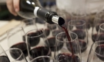 我的葡萄酒旅行记:去柏林做葡萄酒竞赛评委